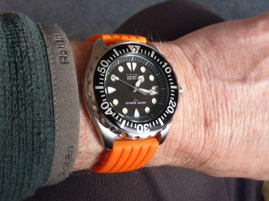 Citizen Diver comfort on silicon deployment.
