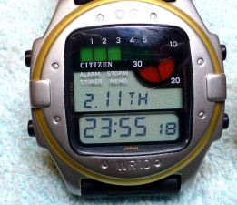 Citizen DW100 Surfer from 1988