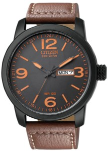 Citizen Eco-Drive Day Date watch - 100m Water Resistance too.